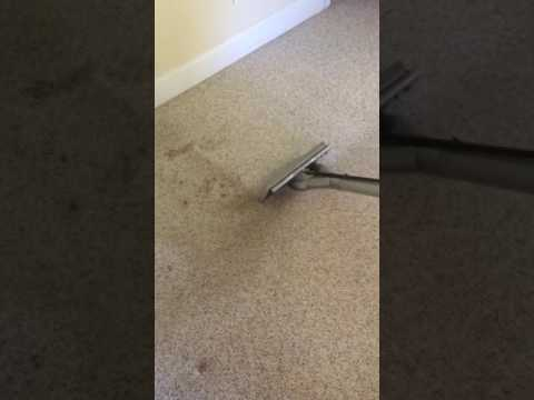 Professional Carpet Cleaners Baltimore MD (Maryland) | Carpet Cleaning Baltimore MD
