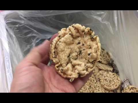 100% Pellet & Seaweed Test