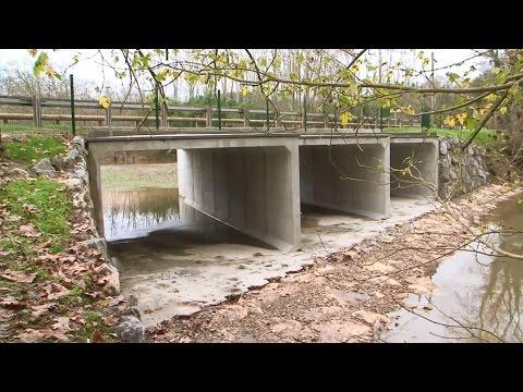 Inauguration du pont de Mimbaste