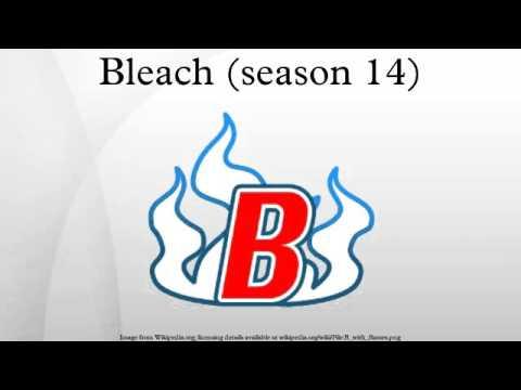 bleach season 14 english dub
