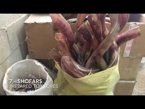 Shofar Made In Jerusalem By Jerusalem Shofars - Kosher