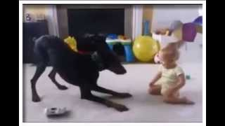 NEW 2015 Cute babies and dogs playing together - Funny baby & dog compilation