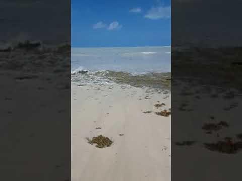 Rough seas in Valley Church, Antigua