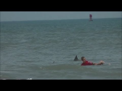 Thumbnail: 13 Year Old Boy Bitten by Bull Shark During Surf Contest