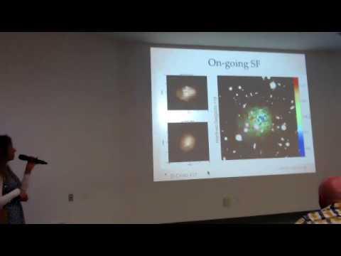 Arianna Di Cintio: A Formation Scenario for Ultra-Diffuse Galaxies