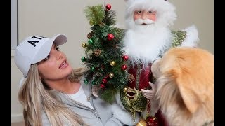 HOLIDAY HOME DECOR HAUL!  | Casey Holmes