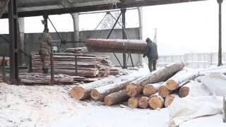 видео Продажа пиломатериалов из дуба
