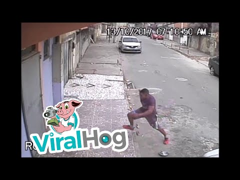 Dog Mistakes Man for Fire Hydrant