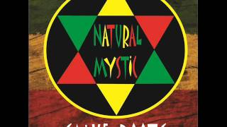 natural mystic salve roots álbum completo