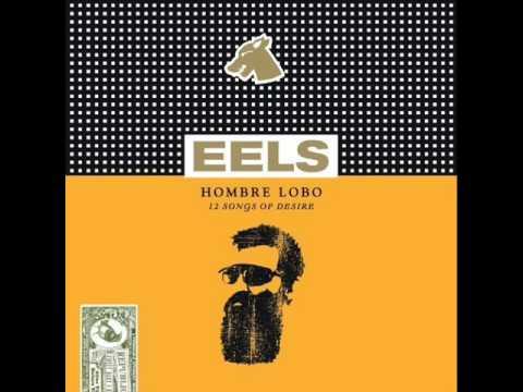 Eels - Beginners Luck