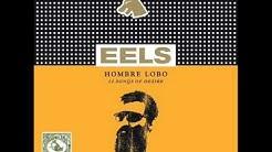Eels - Beginner's Luck