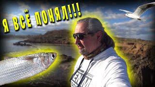 Рыбалка в ГРЕЦИИ У меня начинает получаться В этот раз с уловом