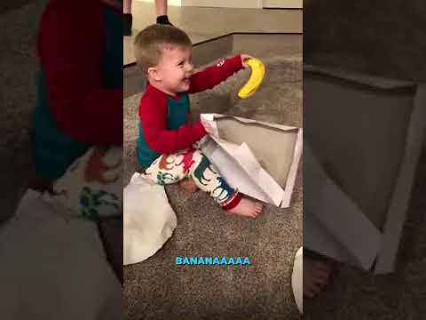 Sylvia Chacon - Little Boy Banana for Christmas…and he LOVES IT.