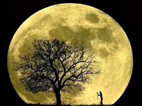 Musica Oscurantista - Black Moon