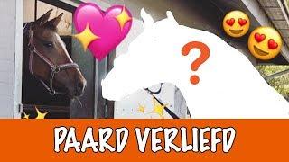 OP WIE IS EVE VERLIEFD? | PaardenpraatTV