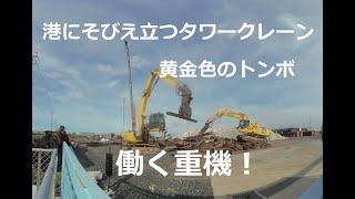 港湾クレーンと黄金色のトンボと働く重機!Heavy Equipment That Works With Harbor Cranes And Golden Dragonflies  180度3DVR