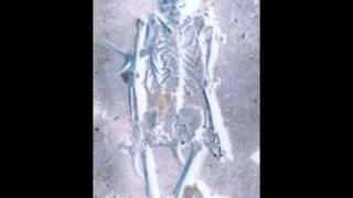 corenutto-skeleton(manifesto).wmv