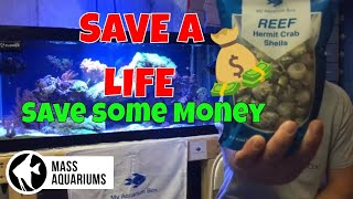 SAVE A LIFE & SAVE MONEY: Introduce a NEW HOME for your CLEAN UP CREW(CUC)