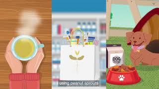 (주) 바이오레스베 - 새싹땅콩, 건강식품전문기업