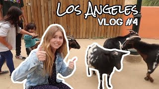 Angriff im Zoo & Shoppen (nochmal)😛😏🙈| Vlog #4