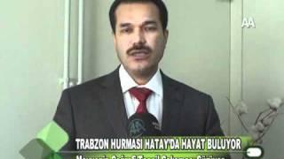 TRABZON HURMASI HATAY'DA HAYAT BULUYOR 02.12.2011.wmv
