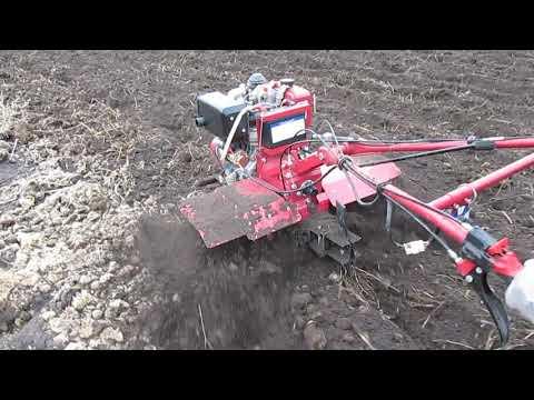 Культивирование огорода с компостом дизельным мотоблокам