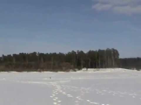 Рыбалка в Куровском