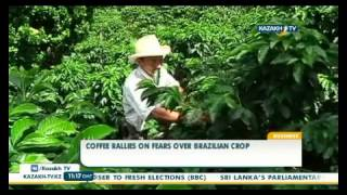 Слабый урожай в Бразилии толкает мировые цены на кофе вверх(, 2015-08-18T10:53:53.000Z)