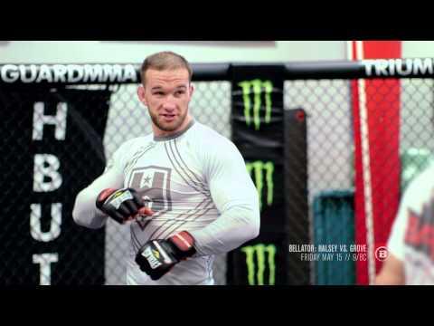 Bellator MMA: In Focus with Brandon Halsey