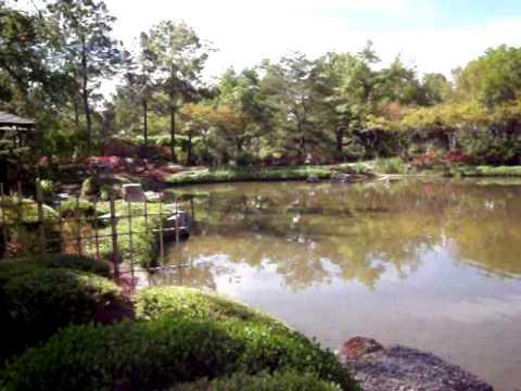 Japanese Garden Hermann Park Youtube
