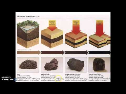 4 - 2 Fossil Fuels - Coal, Oil, Natural Gas Formation