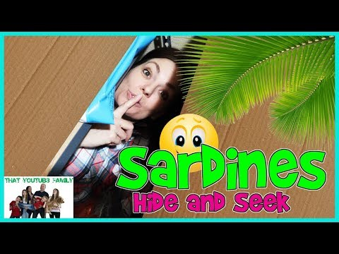 SARDINES Hide and Seek In NEW Box Fort Ball Pit / That YouTub3 Family