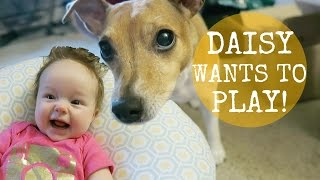 SHE IS NOT A PLAY PARTNER!