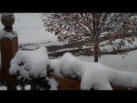 Greg Morrison - snow angel in December