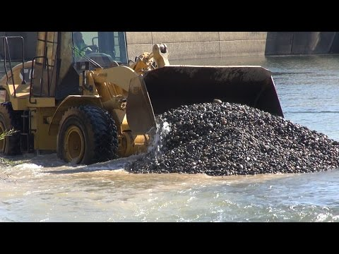 Salmon Spawning Gravel in the American River