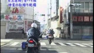 青バイ HONDA ホーネット250 青バイ 検索動画 9