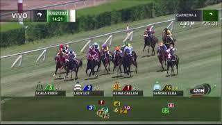 Vidéo de la course PMU PREMIO GABBANA