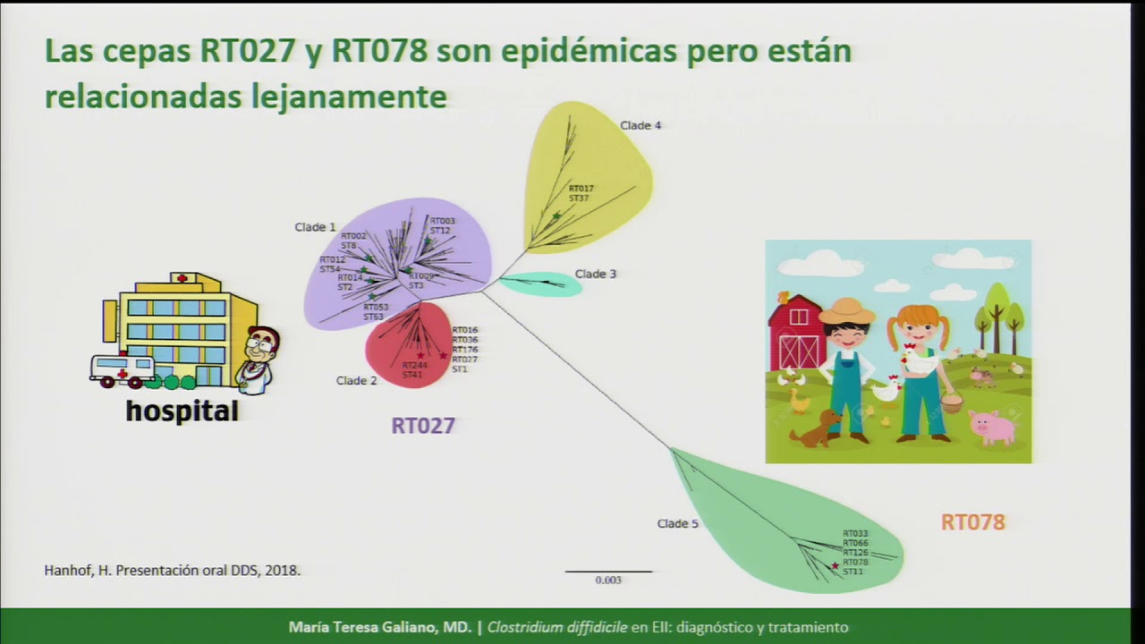 24 colitis por clostridium difficile c mo la diagnosticamos y como la tratamos [ 1280 x 720 Pixel ]