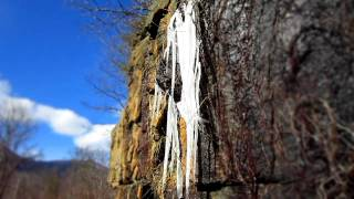 Time Lapse - Icicles Melting in the Sun