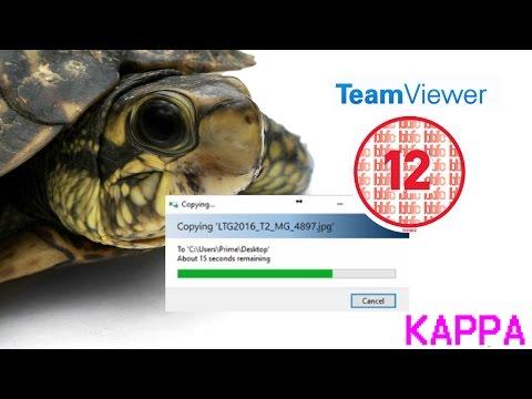 EPIC TeamViewer transfer speed! (KAPPA)
