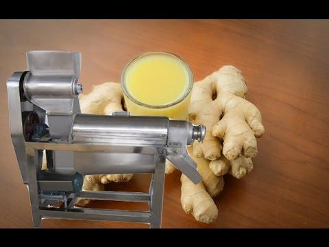 Ginger Juice Extractor Machine|Fruit Juice Machine|Vegetable Juice Machine|multi fruit juice machine