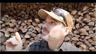 Downy \u0026 Hairy Woodpeckers - Learn a Bird - Episode #5