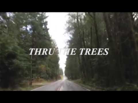 Naomi Punk - Thru The Trees
