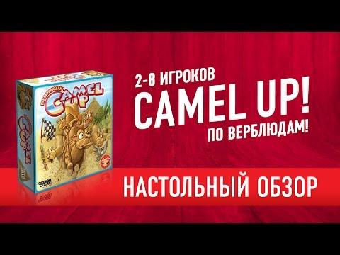 Camel Up! По верблюдам! Обзор настольной игры