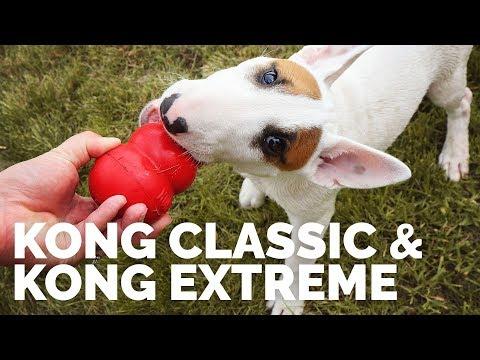 KONG Classic & KONG Extreme