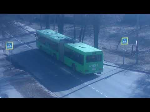 Автобус МАЗ-105 (Bus MAZ-105)