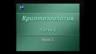 Криптозоология. Урок 2.1. Зоологические тайны Южного полушария