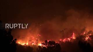 Portugal: Firefighters battle to contain wildfire in south coast of Portugal