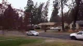 Tree Crashes on House in Windstorm (Spokane, WA)