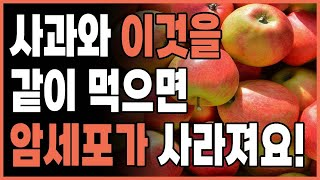 사과 궁합 | 사과와 같이 먹으면 좋은 음식 | 사과와…